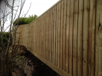 Feather Edge Fencing in Pembroke Dock
