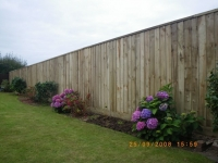 6 foot feather edge fence