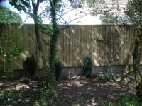Feather Edge fence in Templeton