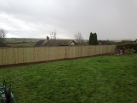 6' Feather Edge Fencing in Haverforwest