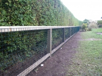 Green Wire mesh onto Post and Rail fence