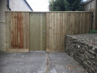 Feather edge fencing and tongue and groove gate in Saundersfoot