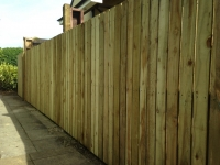 Picket fence in New Hedges