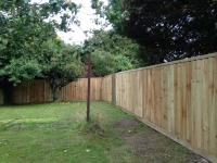 Feather edge fence in Hundleton
