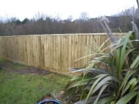 feather edge fence in Pentlepoir